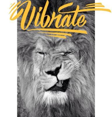 Vibrate Sunday